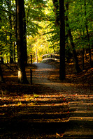 """A morning walk down a path on a nice fall day while camping in the Ludington State Park campground."""