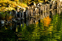"""Sable River with great fall colors reflecting in the water along with the old pilings."""