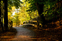 """A morning walk down a path on a nice fall day while camping in the Ludington State Park campground."", autumn"